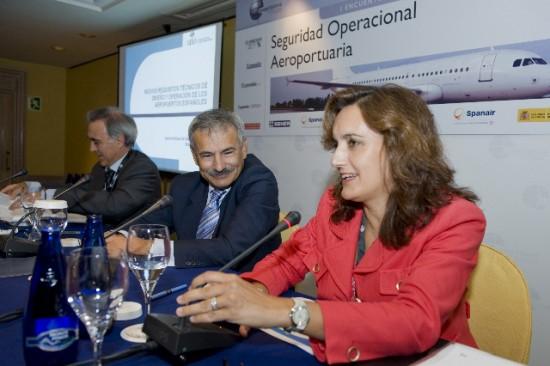 ¿Conocía la AESA la situación de Spanair?